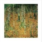 Klimt - Birkenwald