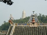 Ornate roof with white pagoda in back