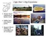 Half-day excursions