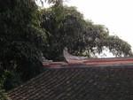 Roof relief