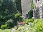 back lawn gardens