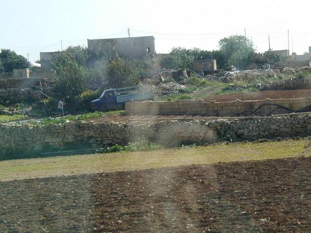 Maltese farming