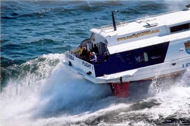 seaflight hydrofoil