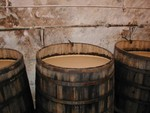 beer-fermentation