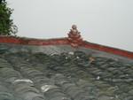 Lotus flower on roof