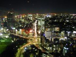 Tokyo from the tower - 1