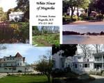 Highlight for Album: White House of Magnolia